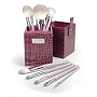 Luxe Brushes 11 pc Sassy Box