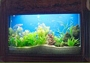 Fish Tank Wall Mounted 3.3""